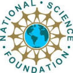 Buy a doctoral dissertation nsf