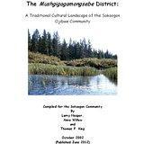 The Mushgigamongsebe District (Nesper, Willow, and King)