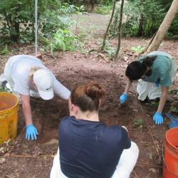 Megan Hardie doing fieldwork