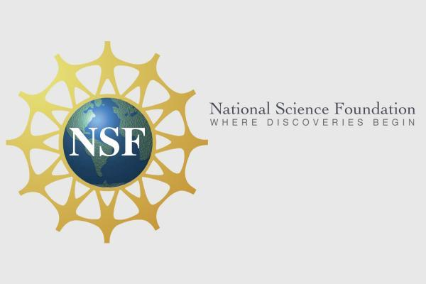 National Sience Foundation logo.