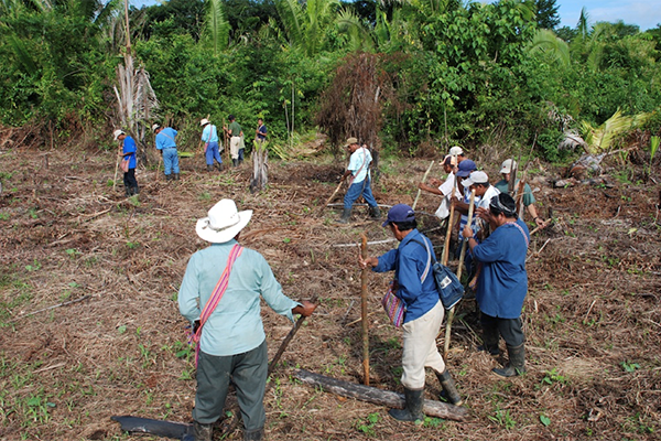 A photo of Mayan farmers in Southern Belize