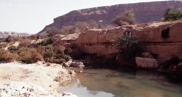 Water pool in the desert