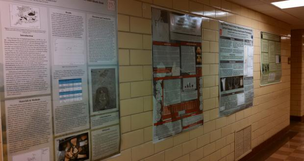 Some of the posters from the 2015 Year In Anthropology symposium