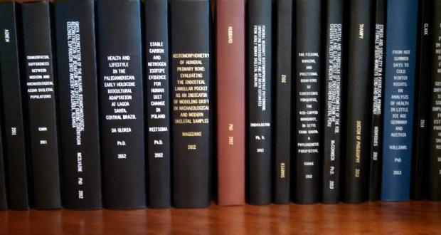 Recent PhD and MA Theses in the Department of Anthropology