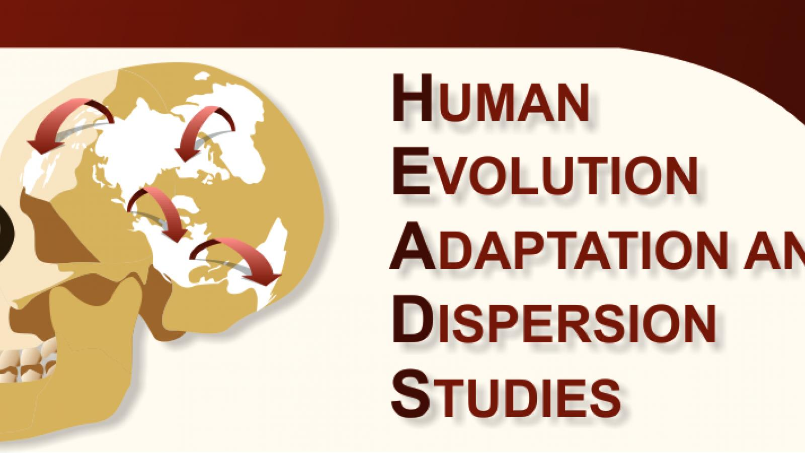 Logo for the Human Evolution Adaptation and Dispersion Studies (HEADS) research group