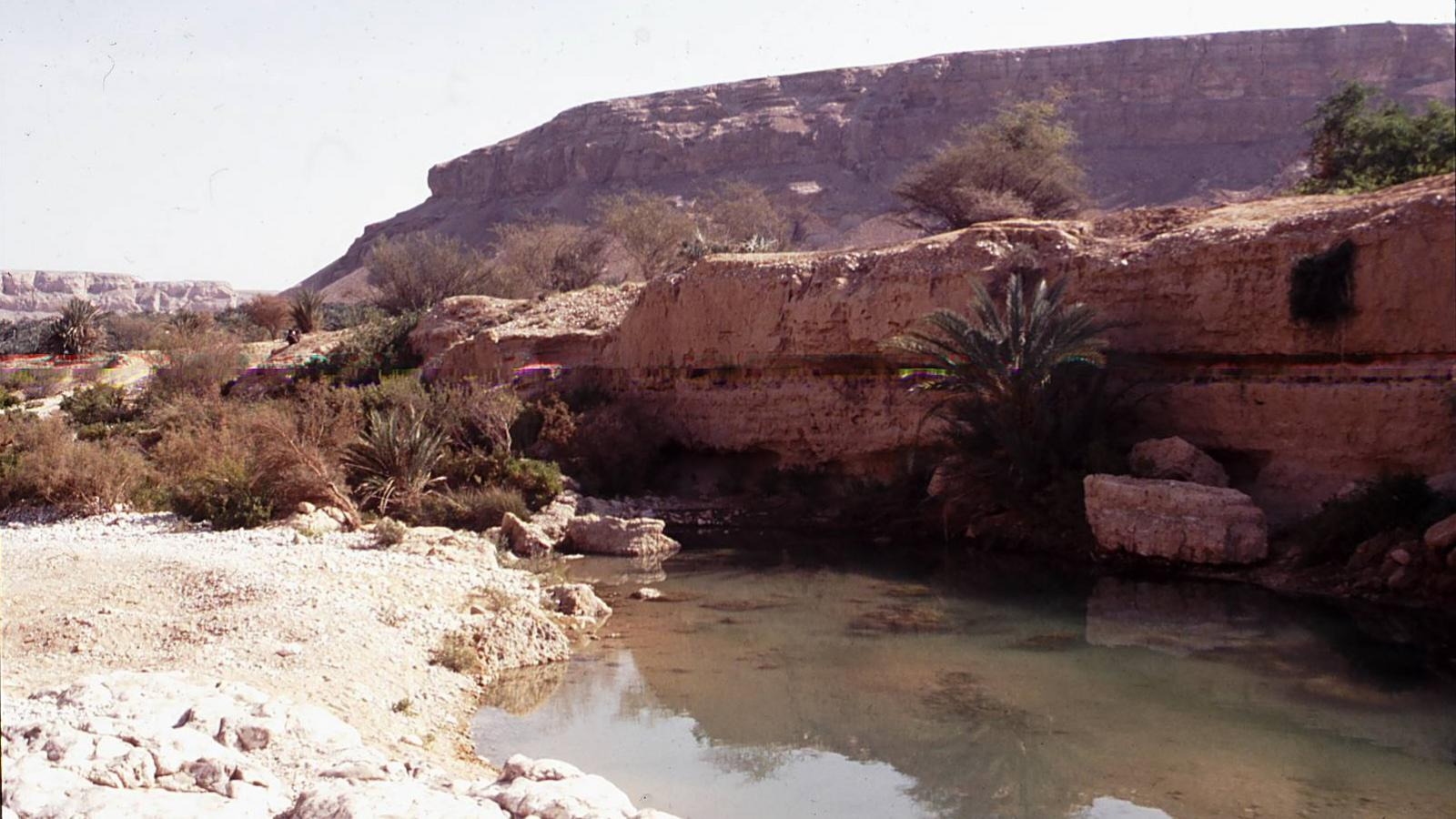 Water pool in the desert