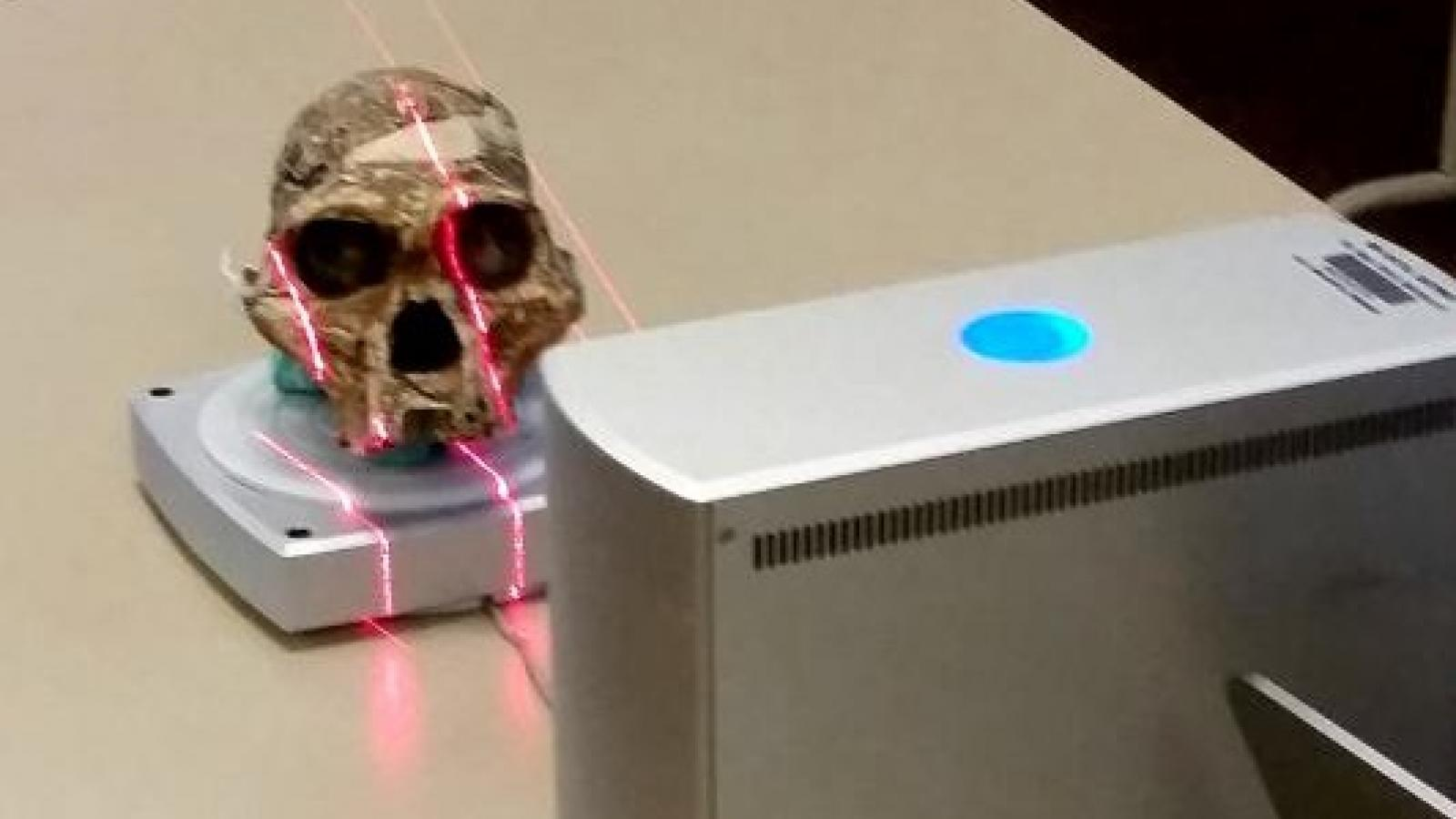 3-dimensional scanning of a hominin skull